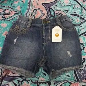 Gymboree Baby Denim Shorts
